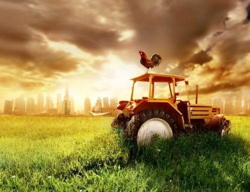 PhD Days 2018 – Agriculture and Robotics