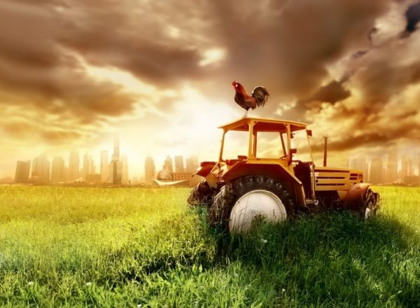 Robotics applied to agriculture